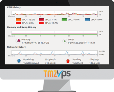 tmzVPS Proactive Monitoring